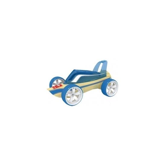 Blauwe strandbuggy raceauto bamboe