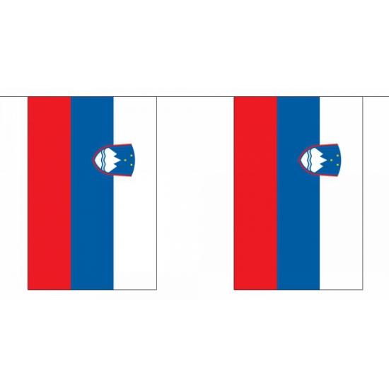 Landen versiering en vlaggen Geen Polyester vlaggenlijn slovenie