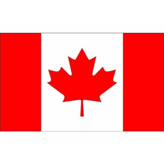Landen versiering en vlaggen Geen Vlag van Canada mini formaat 60 x 90 cm